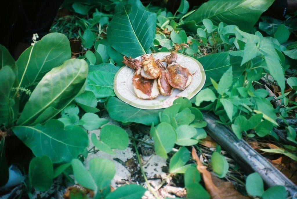 เกาะเหลาเหลียง อาหารทะเลสดๆ จากทะเลตรัง